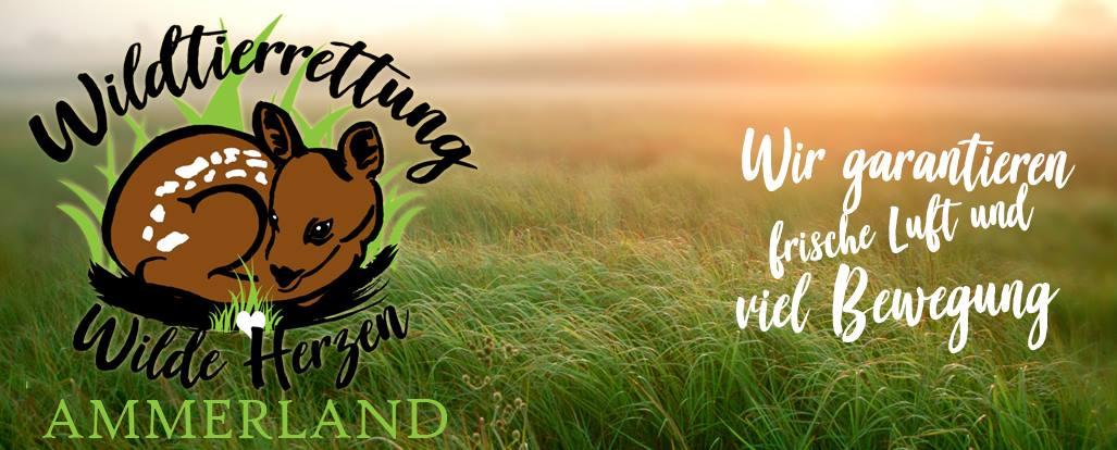 Wildtierrettung Wilde Herzen Ammerland e. V.
